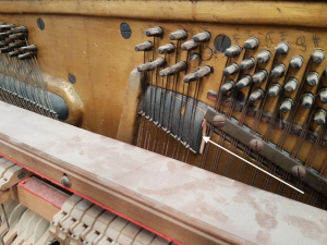 Bearing on tenor strings
